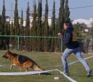 Iwan V5 Murcia